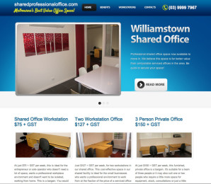 Shared Professional Office Website